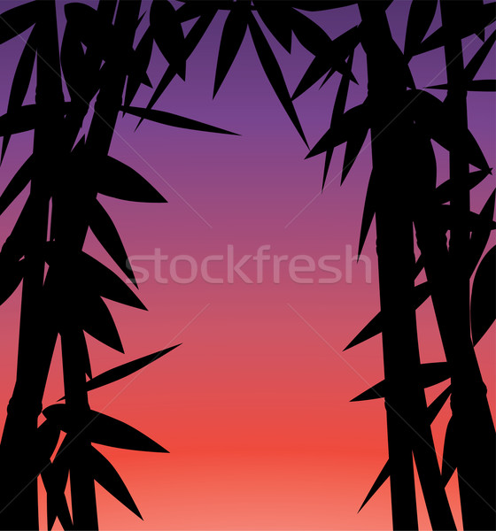 Zonsopgang zonsondergang bamboe bos abstract natuur Stockfoto © freesoulproduction
