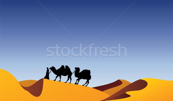 Camellos desierto vector cielo naturaleza negro Foto stock © freesoulproduction