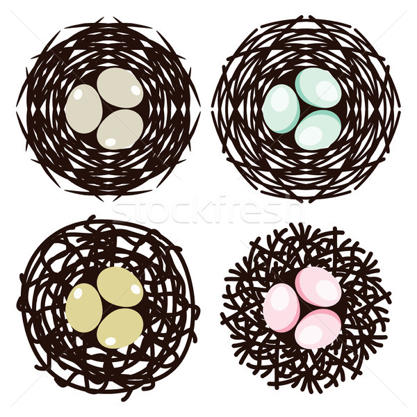 vector symbols of bird nests with eggs Stock photo © freesoulproduction