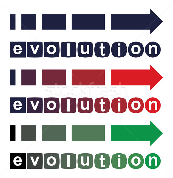 Vector evolución simple perfecto mejora Foto stock © freesoulproduction