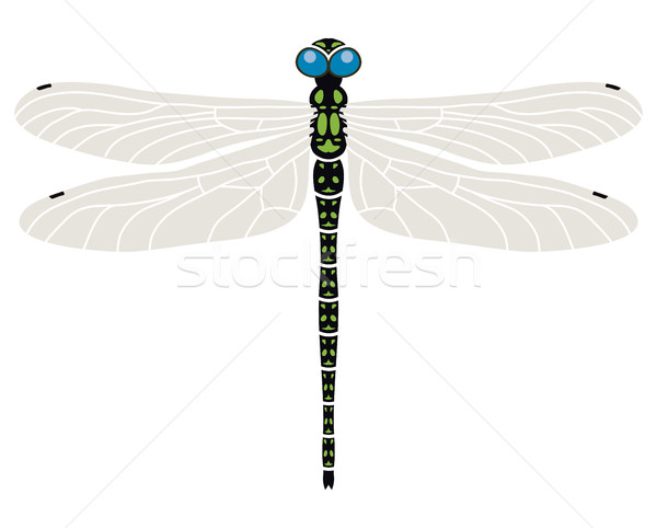 ベクトル 抽象的な トンボ シンボル デザイン 芸術 ストックフォト © freesoulproduction