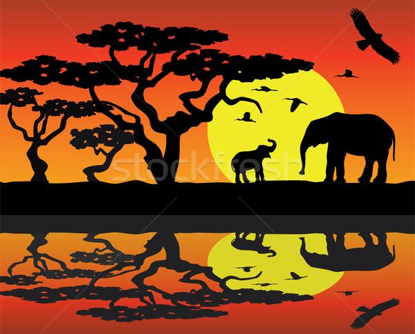 ベクトル アフリカ 母親 象 赤ちゃん ストックフォト © freesoulproduction