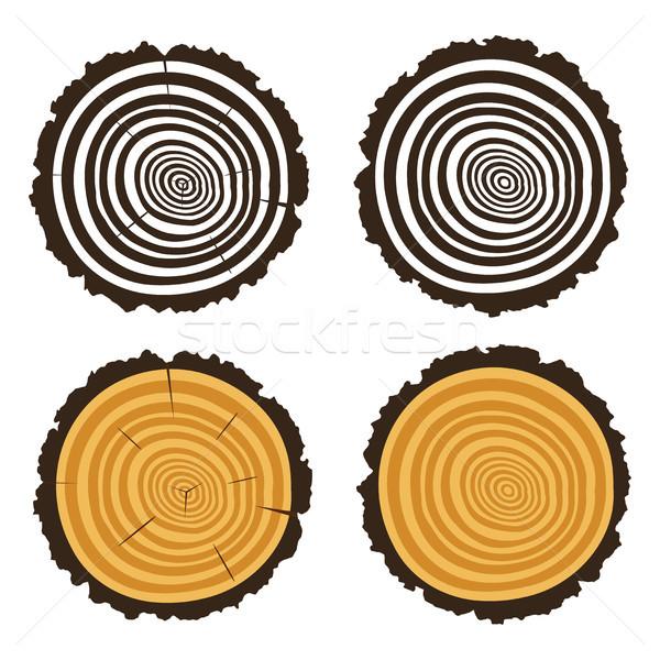 Vektör ahşap kesmek ağaç ortak merkezli halkalar Stok fotoğraf © freesoulproduction