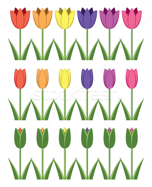 vector set of colorful tulip icons, abstract flower symbols  Stock photo © freesoulproduction