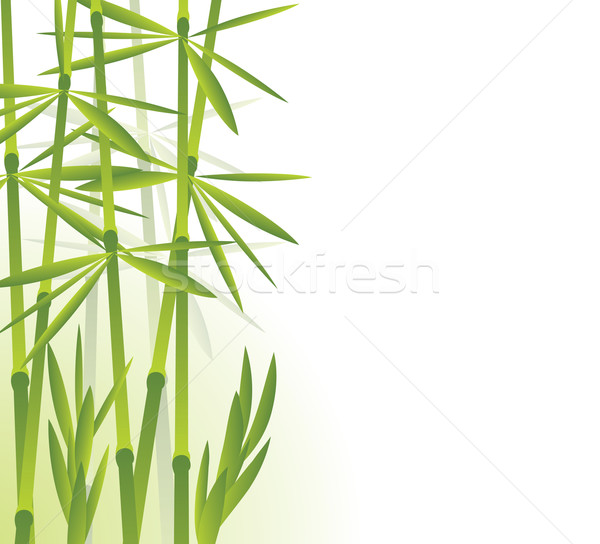 Bamboo Stock photo © freesoulproduction