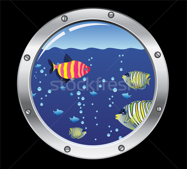 porthole and colorful fishes Stock photo © freesoulproduction