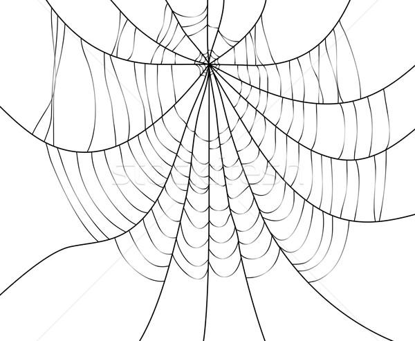 Teia da aranha vetor construção quadro arte animais Foto stock © freesoulproduction