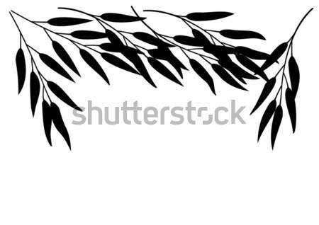 ストックフォト: ベクトル · 竹 · テクスチャ · ツリー · 木材 · 森林