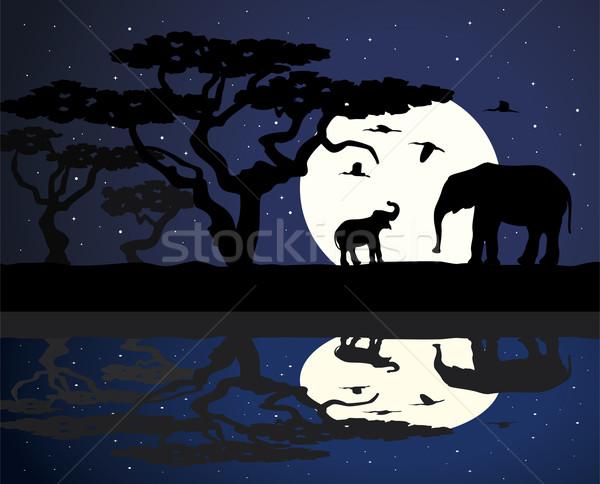 Imagine de stoc: Vector · elefantii · Africa · mamă · elefant · copil