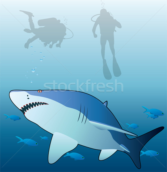 vector shark, tropical fishes and scuba divers  Stock photo © freesoulproduction
