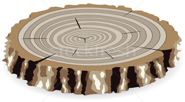 vector wooden old cut Stock photo © freesoulproduction