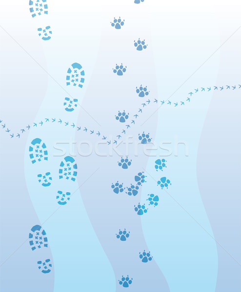 vector  foot prints  on the snow Stock photo © freesoulproduction