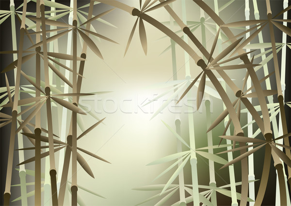 vector bamboo forest Stock photo © freesoulproduction