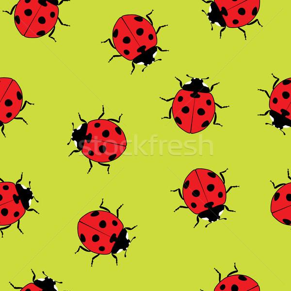 Vektör uğur böceği kırmızı uğur böceği karikatür Stok fotoğraf © freesoulproduction