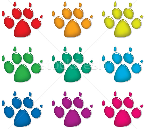 dog's foot prints  Stock photo © freesoulproduction