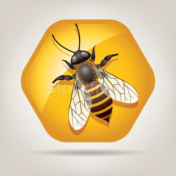 Vector werken bee symbool werk natuur Stockfoto © freesoulproduction