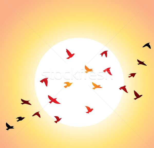 Vliegen vogels heldere zon vector Stockfoto © freesoulproduction