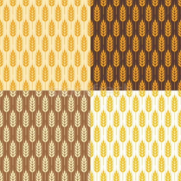 Foto stock: Vetor · sem · costura · trigo · padrões · coleção