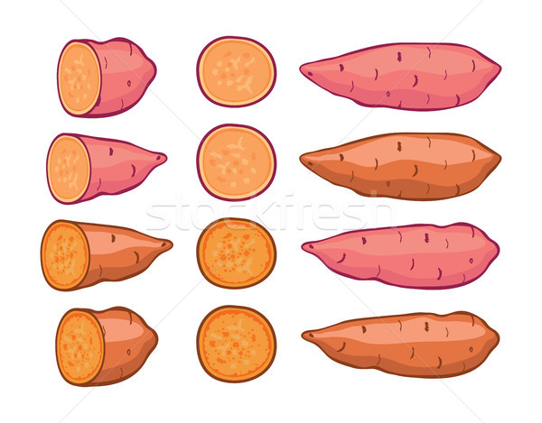 vector sweet potatoes set Stock photo © freesoulproduction