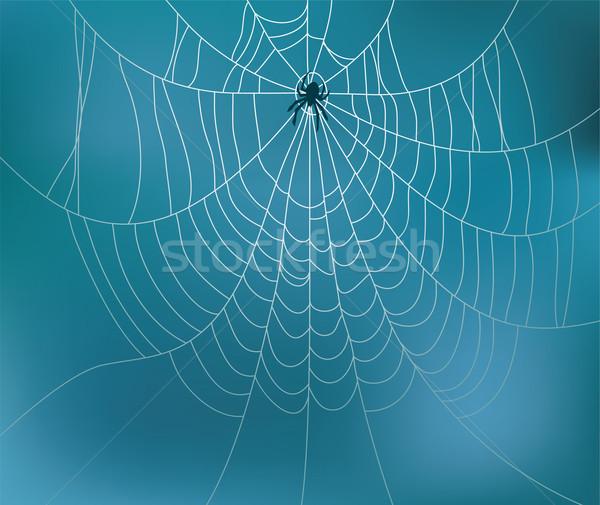Vetor teia da aranha negócio luz quadro arte Foto stock © freesoulproduction