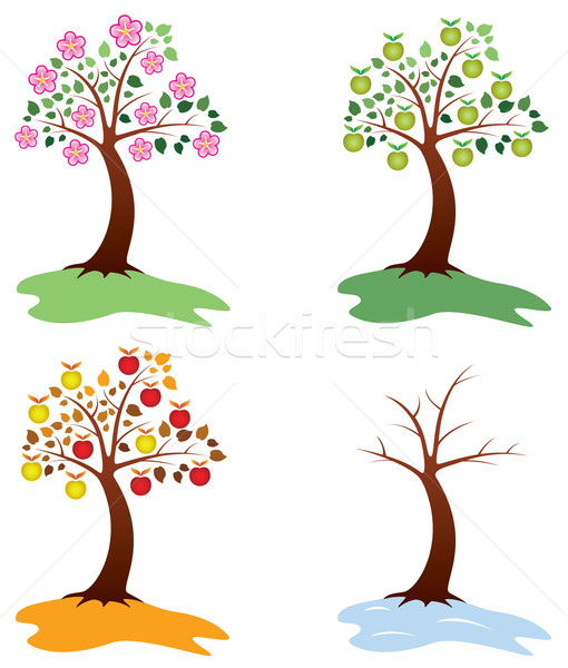 vector set of apple trees Stock photo © freesoulproduction