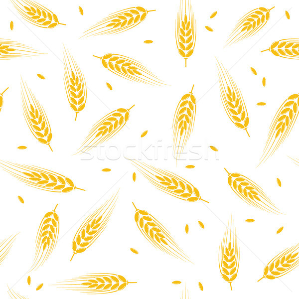 vector seamless wheat, barley or rye background pattern Stock photo © freesoulproduction