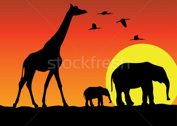 Сток-фото: вектора · жираф · Слоны · Африка · семьи · природы
