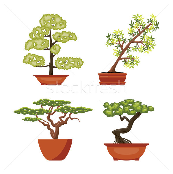 vector set of colorful bonsai trees in pots Stock photo © freesoulproduction