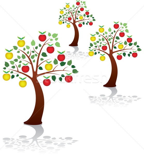 apple trees in a park or orchard Stock photo © freesoulproduction