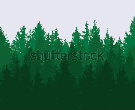 vector forest background. green spring woods, nature landscape Stock photo © freesoulproduction
