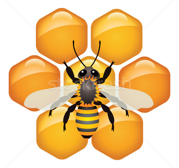 vector symbol of working bee on honeycells Stock photo © freesoulproduction
