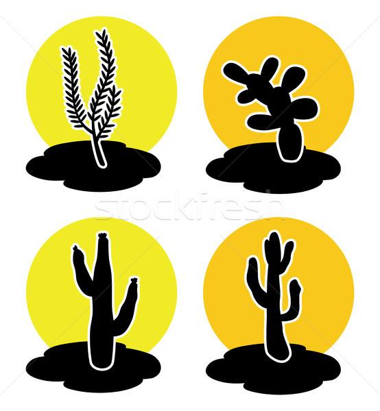 vector icons of cactus in desert  Stock photo © freesoulproduction