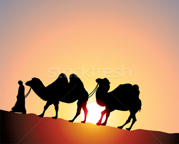 vector camels and bedouin Stock photo © freesoulproduction