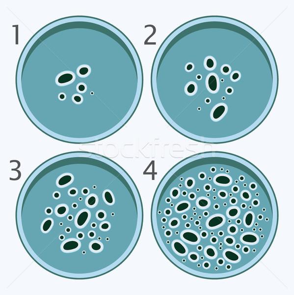 ベクトル 細菌 成長 細菌 料理 孤立した ストックフォト © freesoulproduction