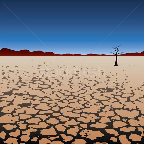 Foto stock: Vetor · solitário · árvore · secar · deserto · céu