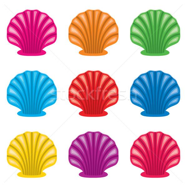 Vektör renkli ayarlamak okyanus kabuk simgeler Stok fotoğraf © freesoulproduction
