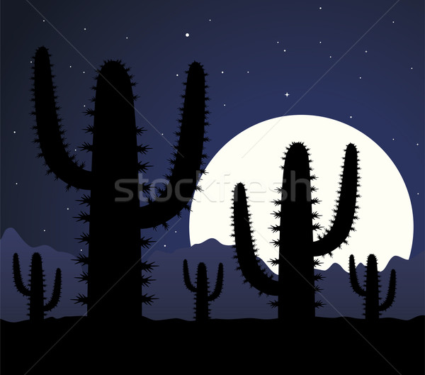 vector cactus in desert at night Stock photo © freesoulproduction