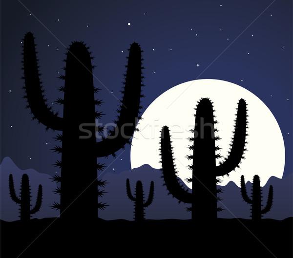 Vector cactus woestijn nacht hemel bloem Stockfoto © freesoulproduction