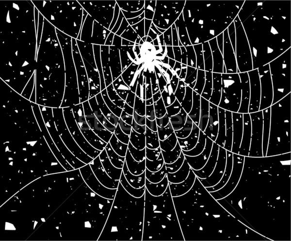 Vetor sujo ilustração teia da aranha construção arte Foto stock © freesoulproduction