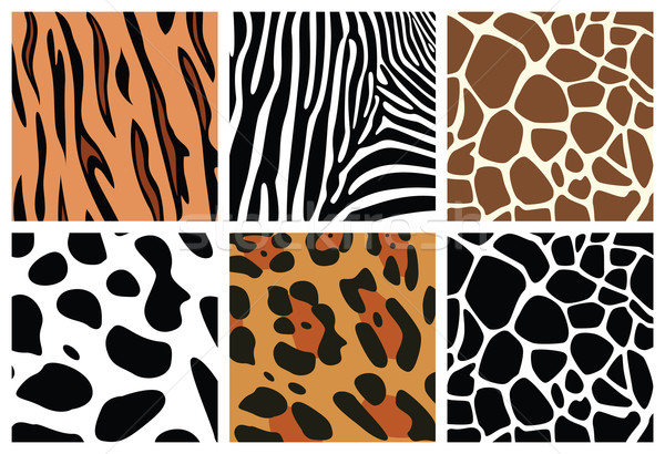 Stock photo: animal skin textures