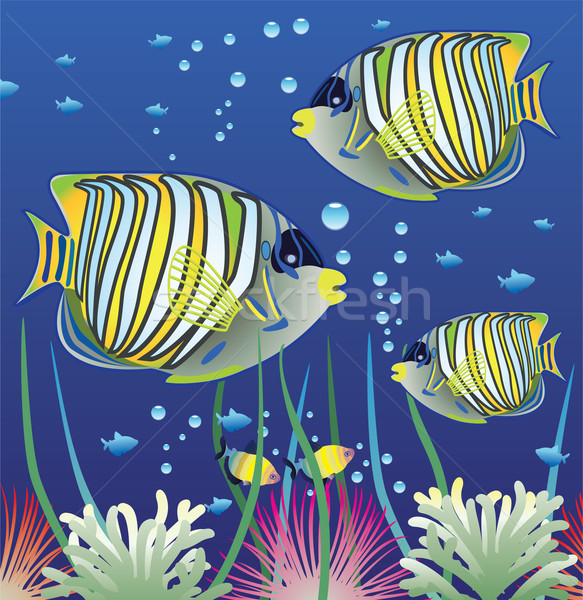 vector aquarium and colorful fishes Stock photo © freesoulproduction