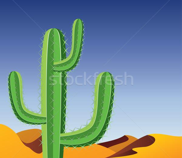 Stockfoto: Vector · cactus · woestijn · hemel · abstract · blad