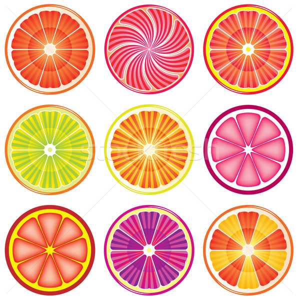 vector set of colorful citrus slices  Stock photo © freesoulproduction