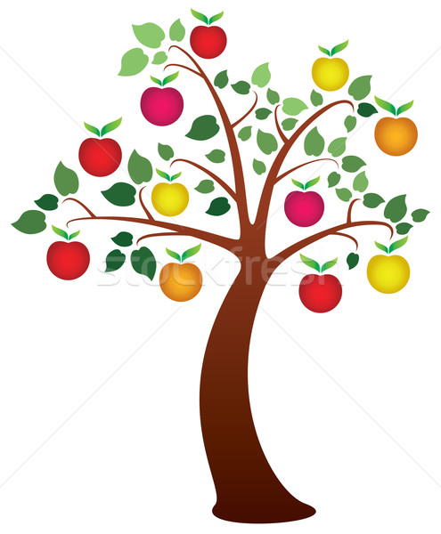 vector apple tree with fruits Stock photo © freesoulproduction