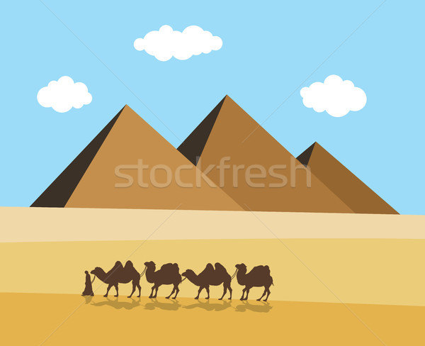 vector camels and bedouin in desert with egyptian pyramides Stock photo © freesoulproduction