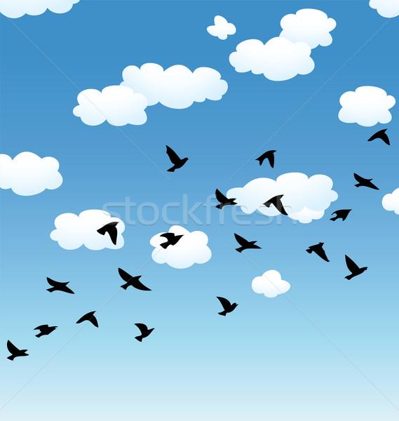 Stok fotoğraf: Vektör · uçan · kuşlar · bulutlar · gökyüzü