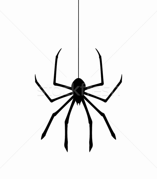 vector hanging spider on web thread Stock photo © freesoulproduction