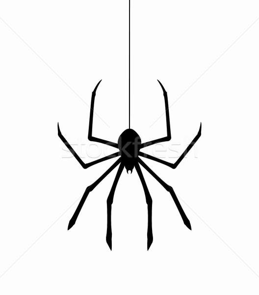 Vecteur suspendu toile d'araignée fil mur design Photo stock © freesoulproduction