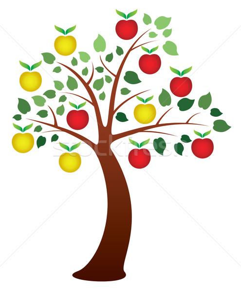 Vektör elma ağacı meyve ahşap doğa elma Stok fotoğraf © freesoulproduction