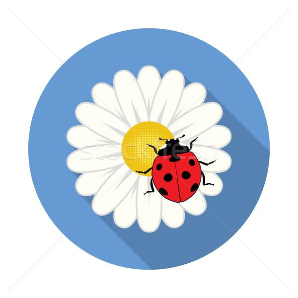вектора красный Коровка ромашка цветок вектор цветок Сток-фото © freesoulproduction
